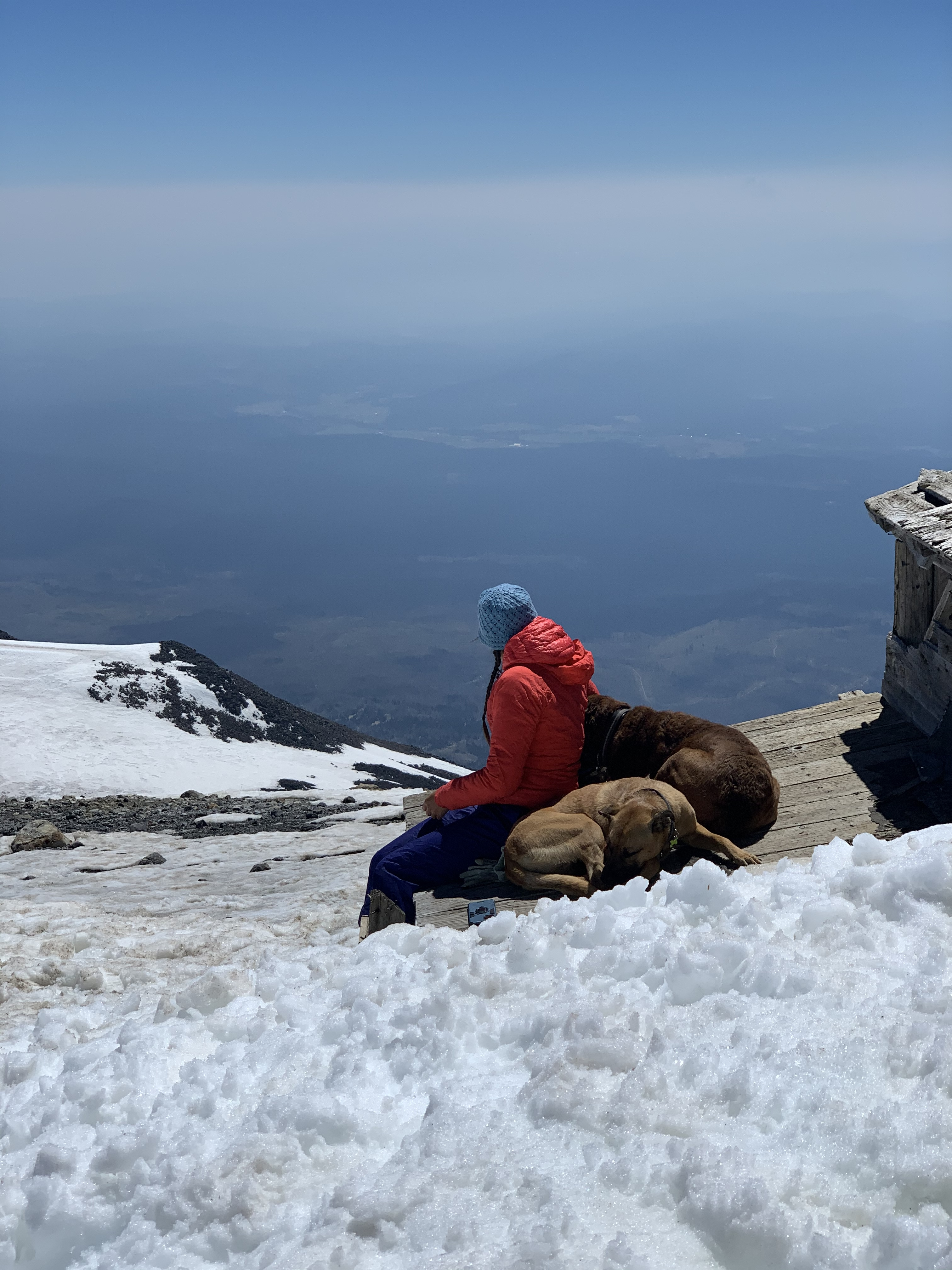 Enjoying the summit view with dog-tired pups!